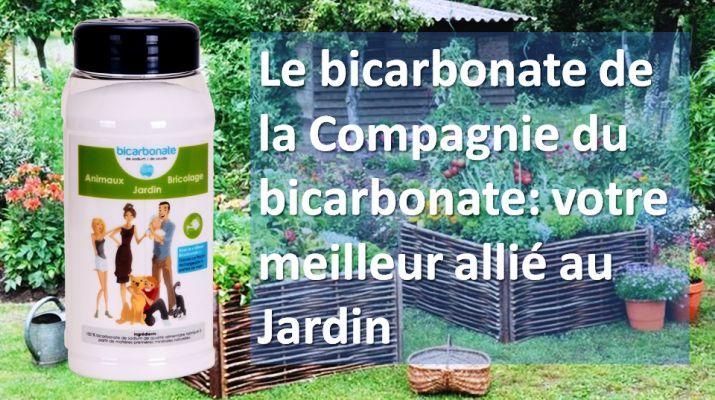 Le bicarbonate, fongicide contre le mildiou, l'oïdium et la tavelure.