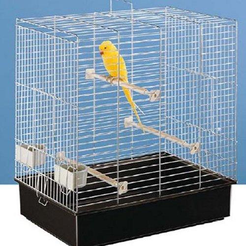 Assainir et d sodoriser les cages et les nids - Decorer une cage a oiseaux ...